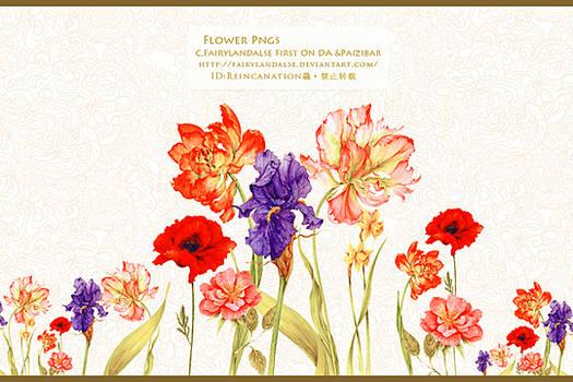 Flower pngs#8