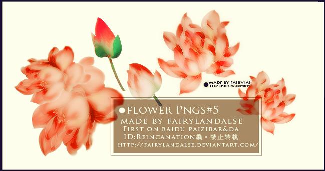 FLOWER PNGS#4 by Fairylandalse