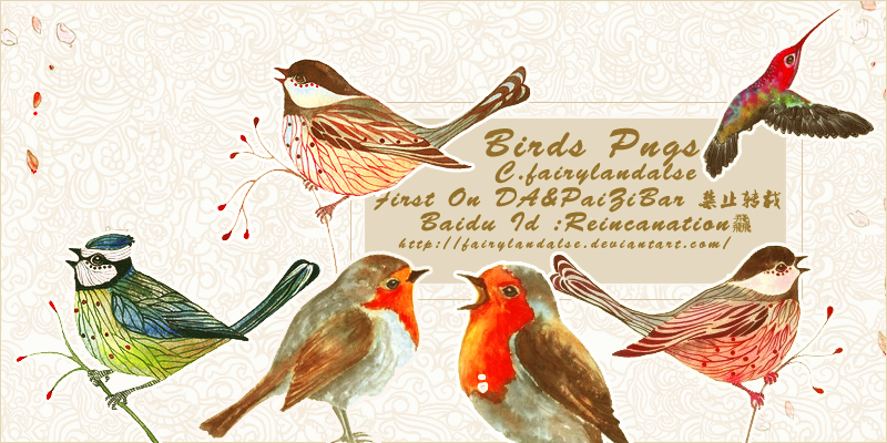 bird pngs by Fairylandalse