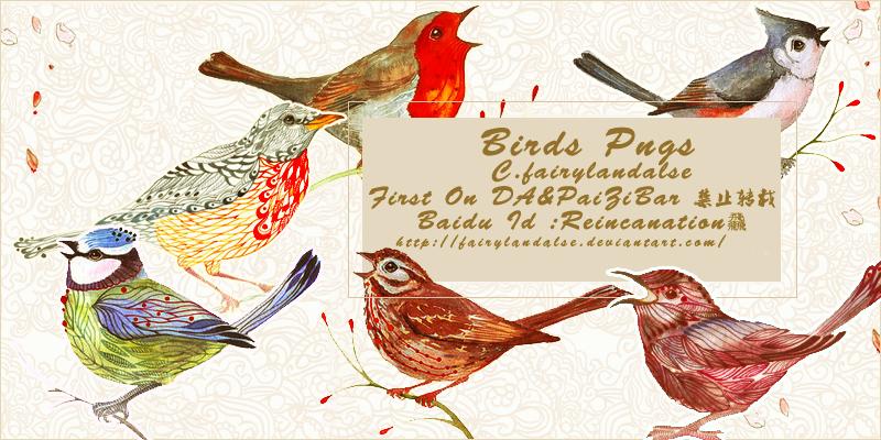 Bird Png3 by Fairylandalse