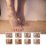 Feet 2 Stock