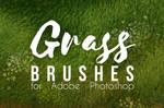 Grass Brushes Set