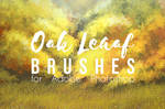 Painterly Background brush (Oak)