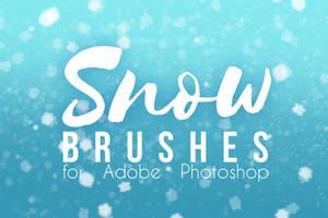 Smilinweapon Snow Brushes