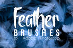 Feather Brushes For Photoshop
