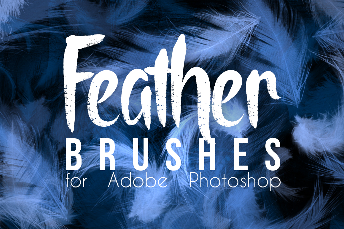 Feather Brushes For Photoshop by smilinweapon