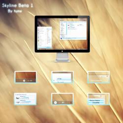 Skyline VS for win7