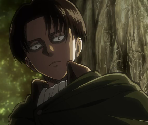 Yandere Levi X Reader X Eren Quotev