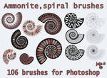 Ammonite, spiral brushes