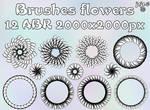 Brushes flowers