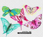 colorful butterflies pngs