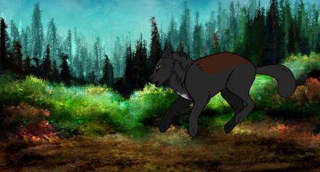 C ll Animation by Demiglint