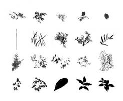 Foliage Brush Set - images