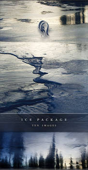 Package - Ice - 10