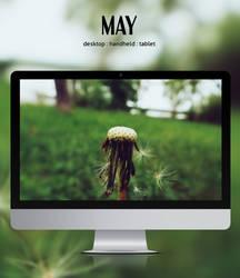 May by leoatelier