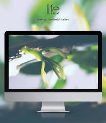 Life by leoatelier