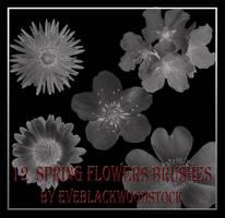 spring flowers brushes by EveBlackwoodStock
