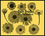 Daisy Brush Set by EveBlackwoodStock