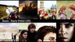 [BASES] Harry Potter