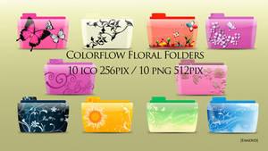 Colorflow Floral Folder