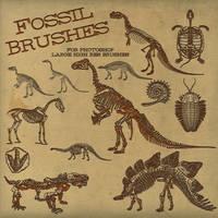 PS Brushes: Dinosaur Fossil