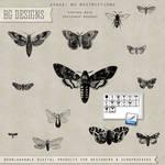 PS Brushes: Vintage Moths