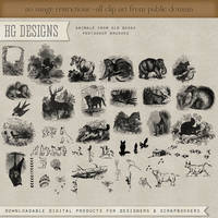 PS Brushes: Animals From Old Books by HGGraphicDesigns