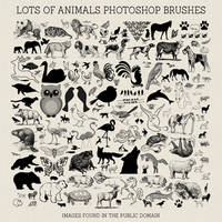 PS Brushes: Lots Of Animals