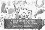 Fruits Basket - Juunishi -
