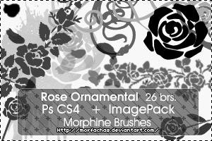 Rose Ornamental Brushes by morfachas