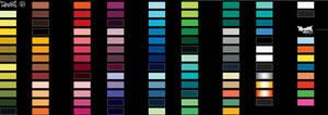 d montana black color swatches
