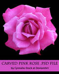 Pink Carved Rose