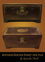 Antique Carved Chest by Cynnalia-Stock