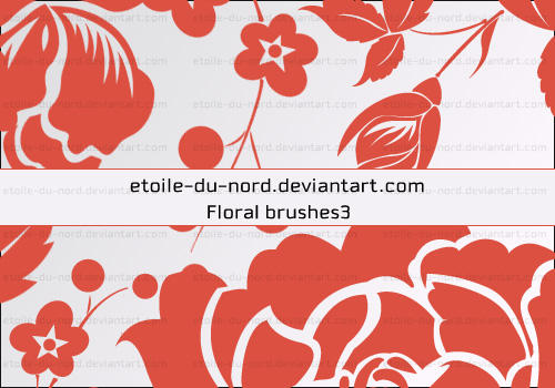 Floral Brushes 3 by Etoile-du-nord