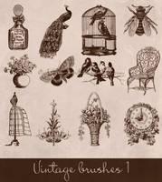 vintage brushes by Etoile-du-nord