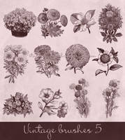 vintage brushes 5 by Etoile-du-nord