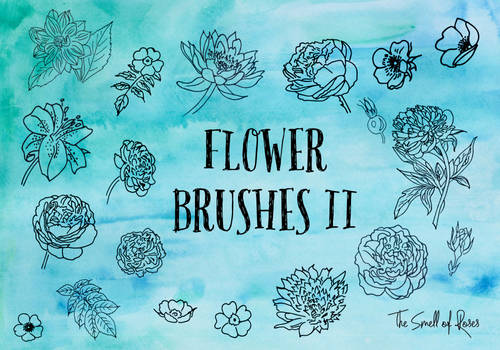 Hand-drawn Flower Brushes - The Smell of Roses