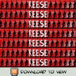 Reese Signature Banner