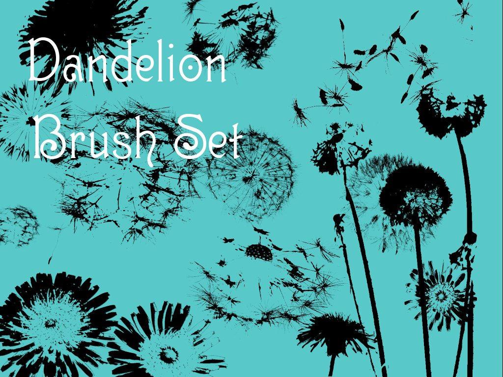Dandelion Brush Set by christiegayle
