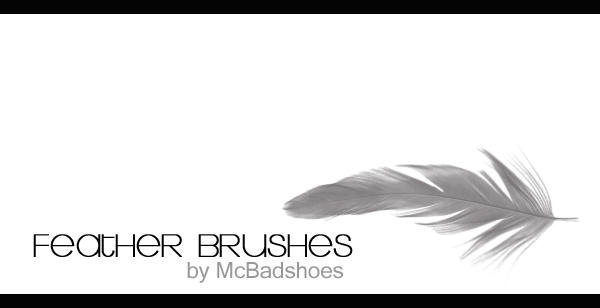Feather Brushes by mcbadshoes