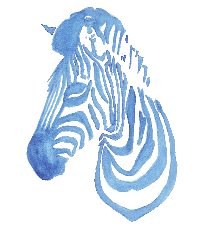 Zebra by MyHeadWonders
