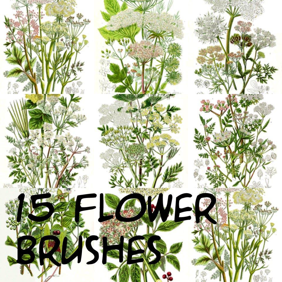 photoshop flower brushes