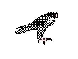 Request - Peregrine Falcon Sprite