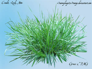 Grass 2 PNG by Sammykaye1sStamps