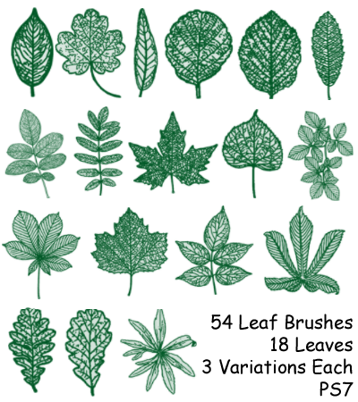 PS7 - 54 Leaf Brushes by mediaklepto