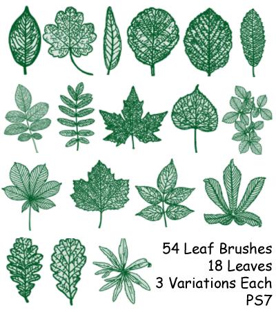 PS7 - 54 Leaf Brushes by mediaklepto