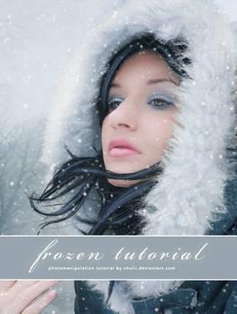 frozen tutorial