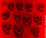 Skull Brushes Set 01