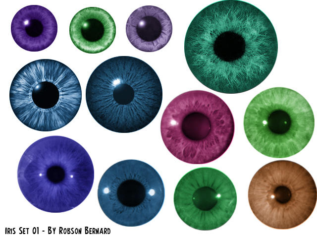 Iris Brushes Set 01 by rbcampos