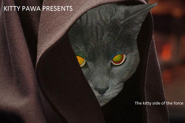 TheAssassin by KittyPwa